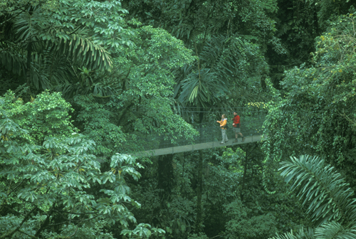 canopy couple